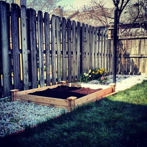 greenes fence 48 in x 48 in cedar raised garden bed