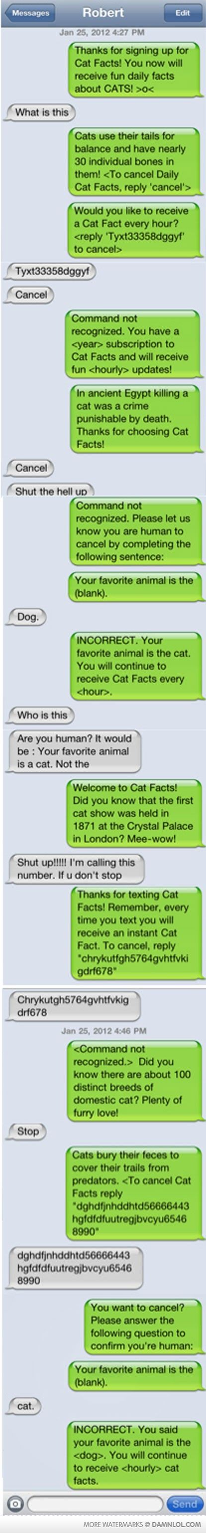 Cat Facts haha