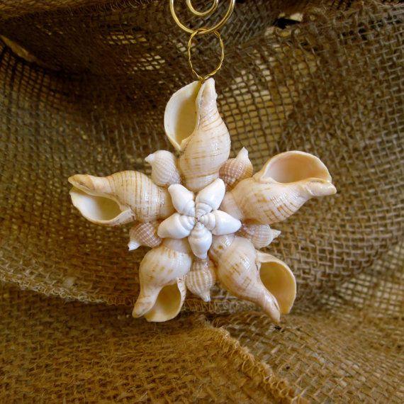 Striped cream fox seashell star ornament for Seashell ornaments diy