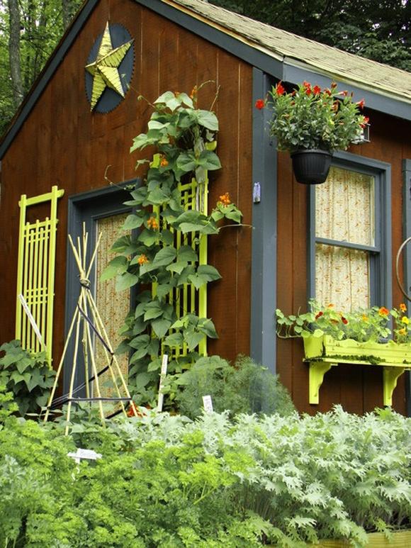 Country garden shed garden pinterest for English garden shed designs