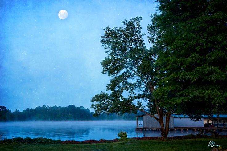 Moon Over Alabama by Cathy Barrows