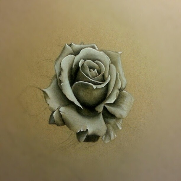 Rose Sketch #art #pencil #drawing #white   Realistic ...