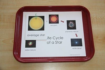 Lifecycle of a star free printable.