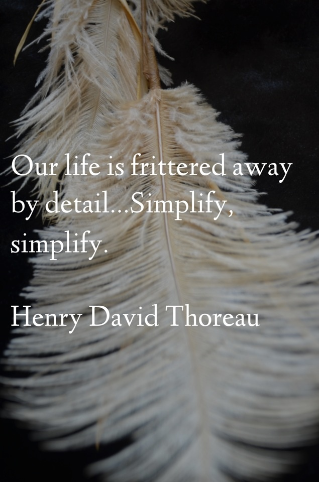 our lives are frittered away by detail essay