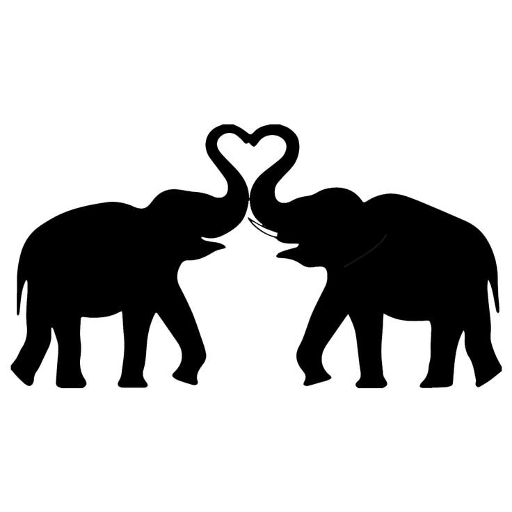 Elephants making a heart with trunks