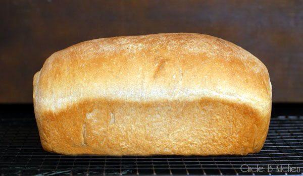 Light Wheat Bread Recipe — Dishmaps