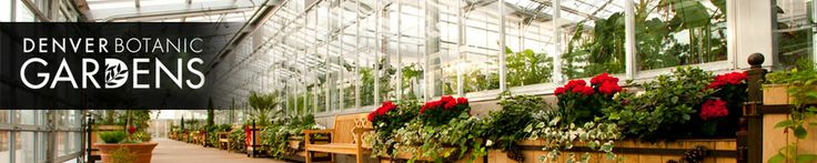 Free days denver botanic gardens denva pinterest for Botanic gardens denver free days