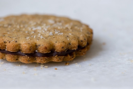 brown sugar sandwich cookie this would be amazing with nutella in the ...