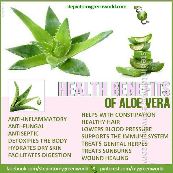 aloe vera benefits remedies