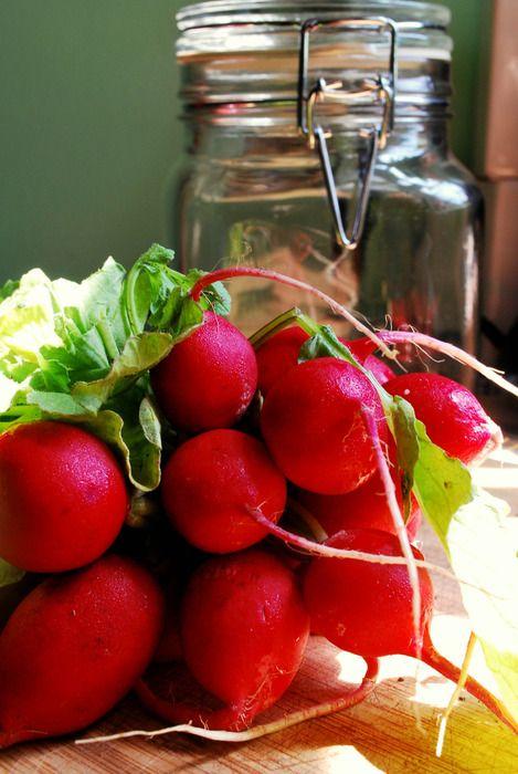 Pickled Radishes | yummy | Pinterest