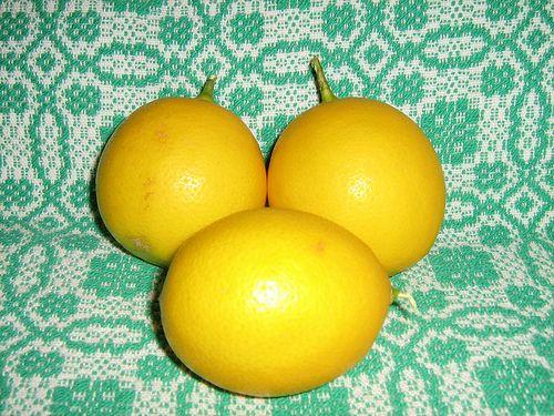 Lemon Cornmeal Cake   Recipe