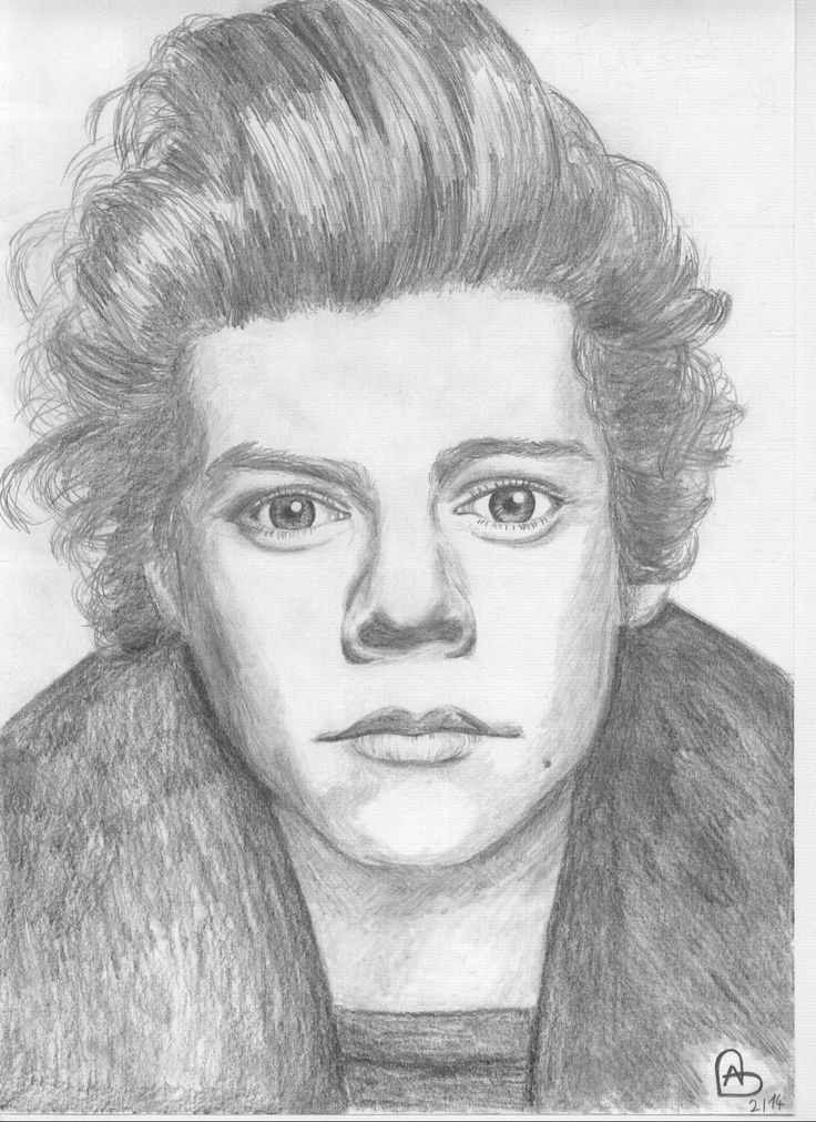 Harry Styles drawing by Annabel Nannt