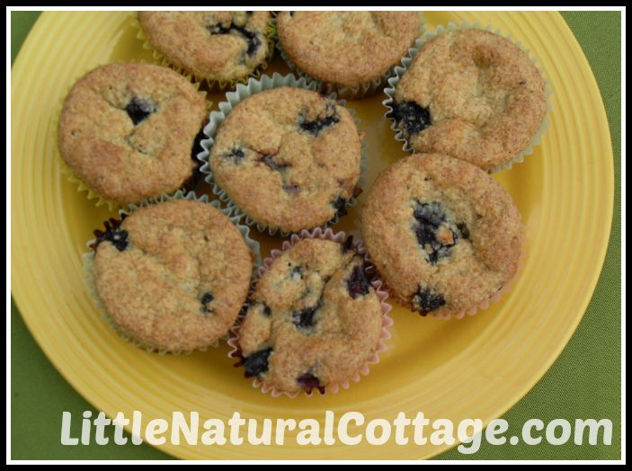 COCONUT BLUEBERRY MUFFINS | Trim healthy mama (S) breakfast | Pintere ...