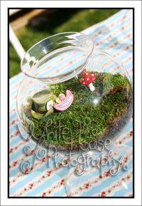 Alice in wonderland sweet 16 decor ideas