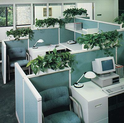cubicle planters barbara helfman green pinterest