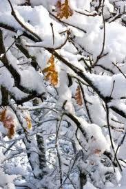 UK Autumn & Winter 2013/14 forecast package inc snow risk forecast