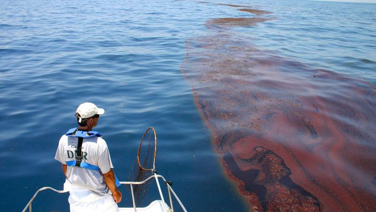 oil spill research paper