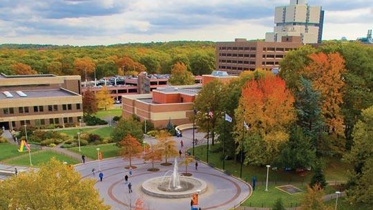 state university of new york dissertations