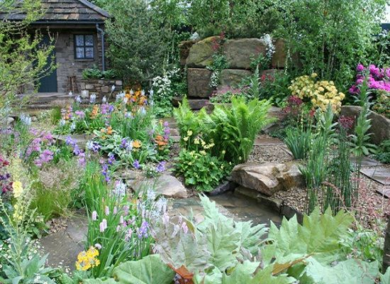 Rain garden design and home park ideas for outdoor for Rain garden design
