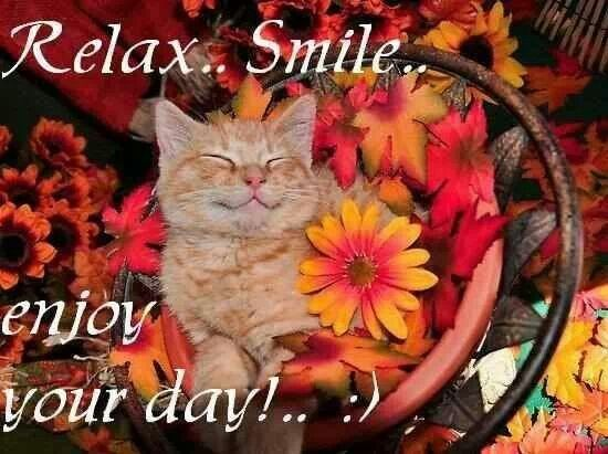 Relax Smile...enjoy your day! Beautiful Sayings & Scenes