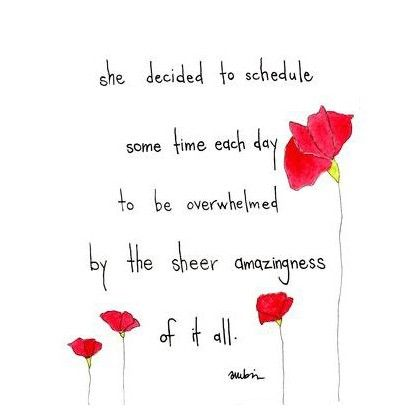 """She decided to schedule some time each day to be overwhelmed y the sheer amazingness of it all."" :: sheer amazingness 8x10 print by pinwheeldesigns on Etsy"