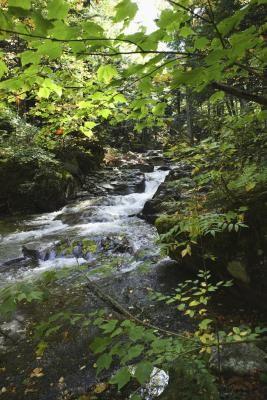 how to build a homemade backyard stream