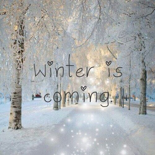 winter is coming quotes quotesgram