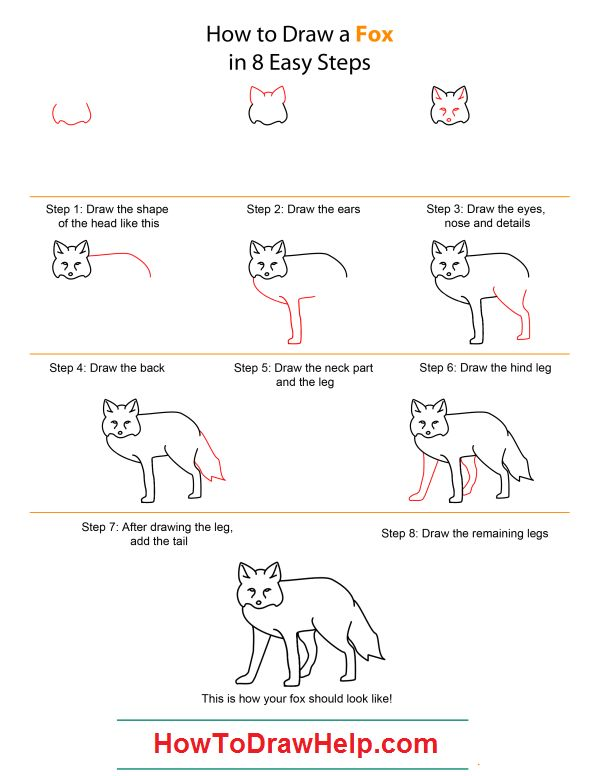 How to draw a wolf  Step by step Drawing tutorials