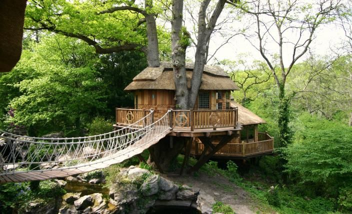 Cliffside Lodge http://www.blueforest.com    Access to the tree house is via a dramatic rope bridge leading from the second floor veranda of the property to the main deck.