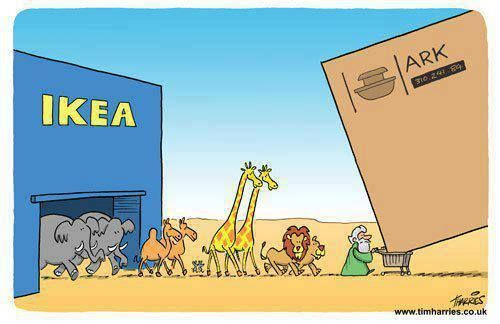 Love this Noah Cartoon