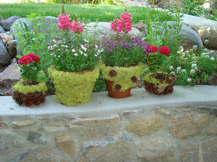 Create your own Moss Garden Flower DIY Pinterest