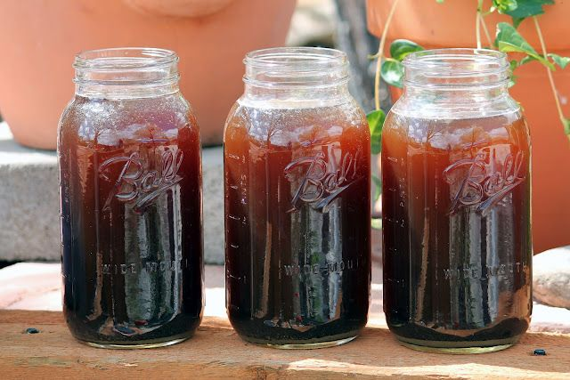 Sweet sweet tea! But don't drink it ... It's made from poop!