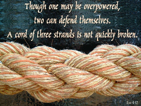 Cord of three strands humor amp quotes pinterest
