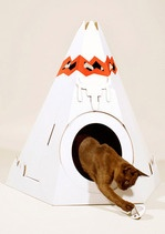 what cat DOESN'T need a teepee?