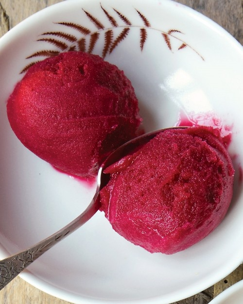 this cranberry sorbet has the right balance of sweetness and tartness ...