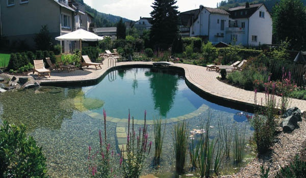 Backyard Swimming Pond Ideas