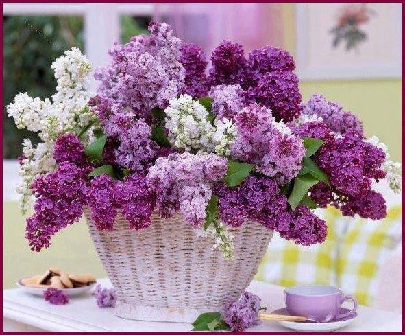 PURPLE FLOWER BASKET