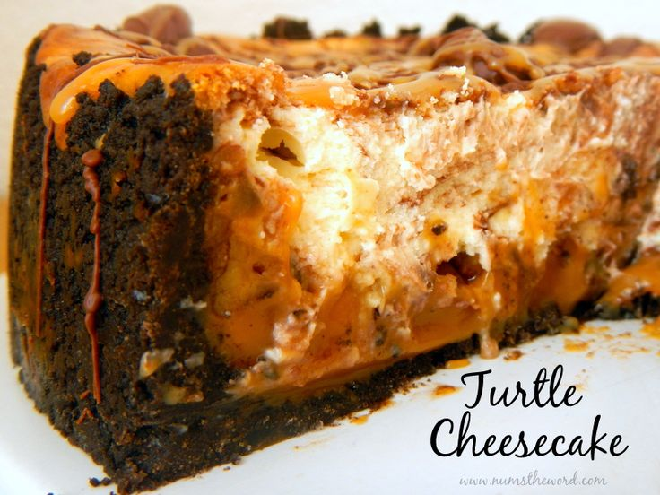 ... chocolate swirl cheesecake and a chocolate and caramel drizzle