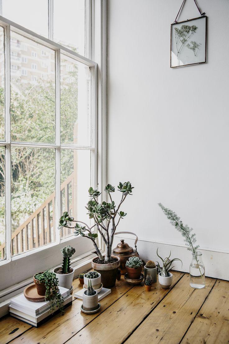 1000 ideas about indoor window garden on pinterest plants window plants and indoor