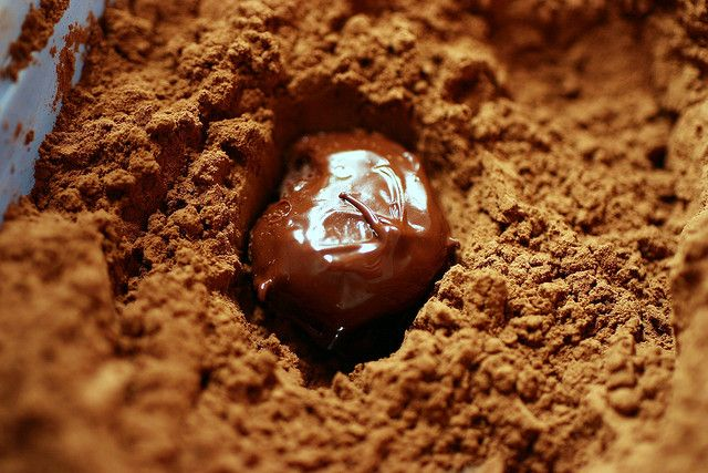 ... http smittenkitchen com blog 2007 12 robert linxes chocolate truffles