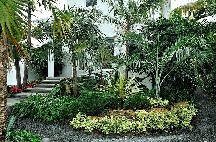 Key West Style Backyards : Saunders Residence  Key West  thoughts on landscaping  Pinterest