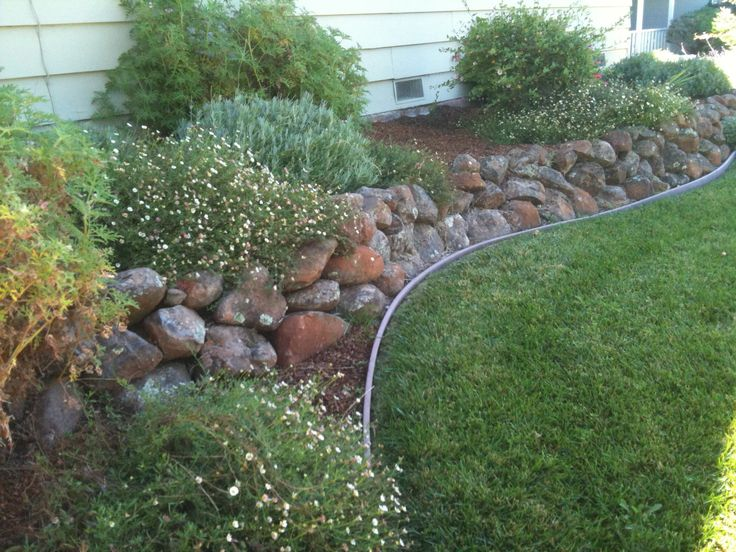 Pin by Kelly Hill on Drought Tolerant Landscape Ideas