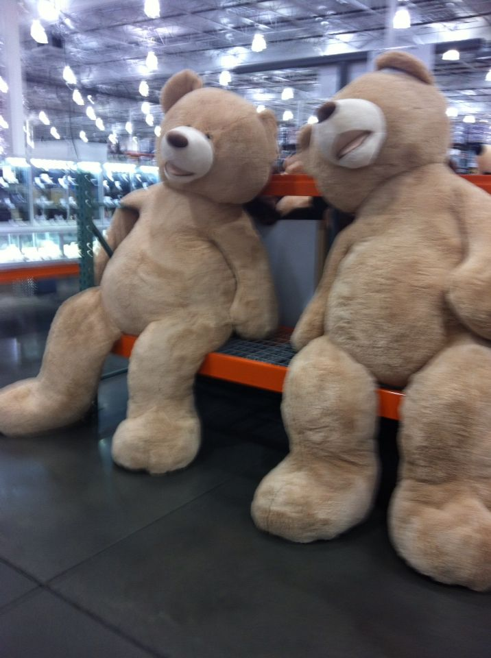 Giant stuffed teddy bear costco