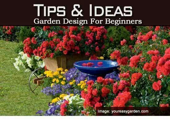 Landscape for beginners my garden pinterest - Garden design for beginners ...
