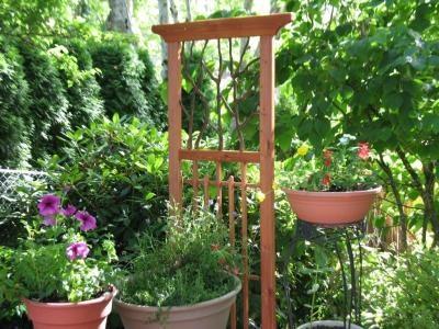 Pin By Lonestar Blondie Art Vintage On In The Garden