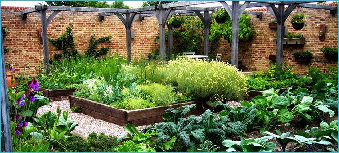Jamie Olivers veggie garden in June