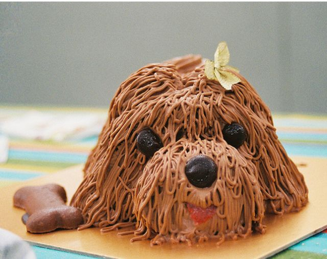 dog cake Cake decorating Pinterest