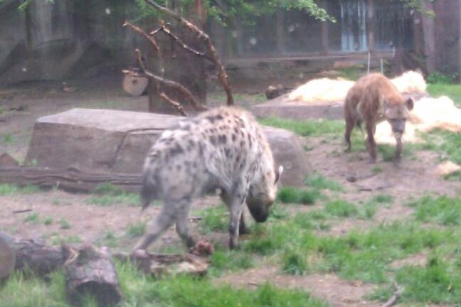 milwaukee zoo memorial day hours
