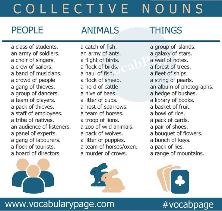 Best 25+ Collective nouns ideas on Pinterest | Awesome group names ...