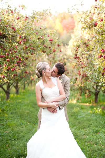 Apple orchard wedding ideas intimate weddings small for Small intimate wedding ideas
